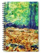 Magic Stone Circle Spiral Notebook