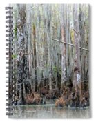 Magical Bayou Spiral Notebook