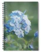 Magical Blues Spiral Notebook