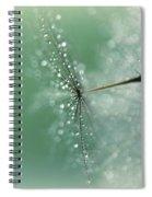 Magical Bokeh Spiral Notebook