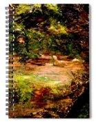 Magical Forest - Myth - Fantasy Spiral Notebook