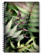 Magical Forest 3 Spiral Notebook