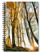 Magical Forest - Drawing Spiral Notebook