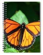 Magical Monarch Spiral Notebook