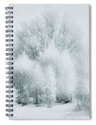 Magical Snow Palace Spiral Notebook