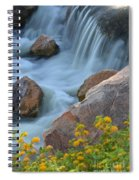 Magical Waters Spiral Notebook
