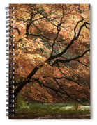 Magnificent Autumn Spiral Notebook