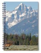 Magnificent Elk Spiral Notebook