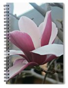 Magnificent Magnolia Blossom Spiral Notebook