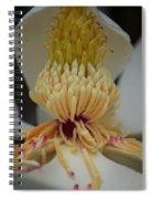 Magnolia 14-4 Spiral Notebook