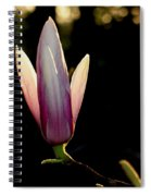 Magnolia Candle Spiral Notebook