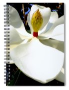 Magnolia Carousel Spiral Notebook