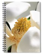 Magnolia Center Spiral Notebook