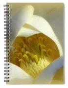 Magnolia Cloud Spiral Notebook