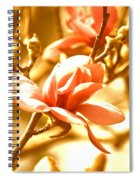 Magnolia Dreams Spiral Notebook