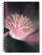 Magnolia Flower - Photopower 1825 Spiral Notebook