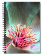 Magnolia Flower - Photopower 1843 Spiral Notebook