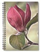 Magnolia Glow Spiral Notebook