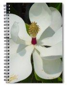Magnolia II Spiral Notebook
