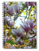 Magnolia Maidens In A Border Spiral Notebook