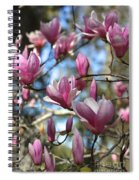 Magnolia Perspective Spiral Notebook
