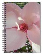 Magnolia Surprise Spiral Notebook