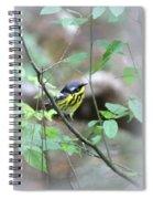 Magnolia Warbler - Bird Spiral Notebook