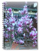 Magnolias At Home Spiral Notebook