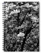 Magnolias In White Spiral Notebook