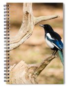 Magpie Spiral Notebook