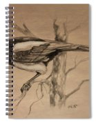 Magpie Sketch Spiral Notebook