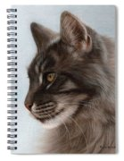 Maine Coon Painting Spiral Notebook