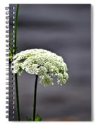 Maine Flora Spiral Notebook