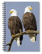 Majestic Beauty  6 Spiral Notebook