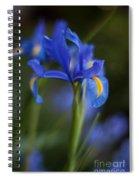 Majestic Blue Iris Spiral Notebook