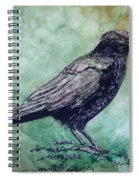 Majestic Crow Spiral Notebook