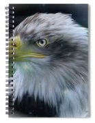 Majestic Eagle Of The Usa - Featured In Feathers And Beaks-comfortable Art And Nature Groups Spiral Notebook