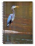 Majestic Heron Spiral Notebook