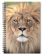 Majestic King Spiral Notebook