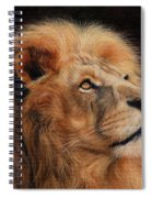 Majestic Lion Spiral Notebook