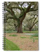 Majestic Live Oaks In Spring Spiral Notebook