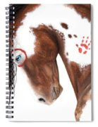 Majestic Pinto Horse 129 Spiral Notebook
