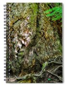 Majestic Spirit Collection 1 Spiral Notebook