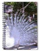 Majestic White Peafowl Spiral Notebook