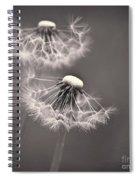 make a wish I Spiral Notebook