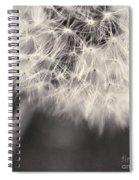 make a wish III Spiral Notebook