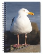 Make Sure You Get My Good Side Spiral Notebook