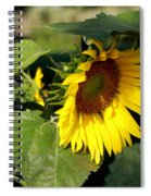 Makin My Own Shade Spiral Notebook