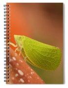 Making Like A Leaf Spiral Notebook