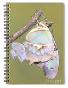 Malachite Butterfly Emerging 6 Of 6 Spiral Notebook